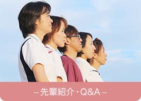 先輩紹介・Q&A